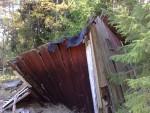 Fallna huset i älggläntan