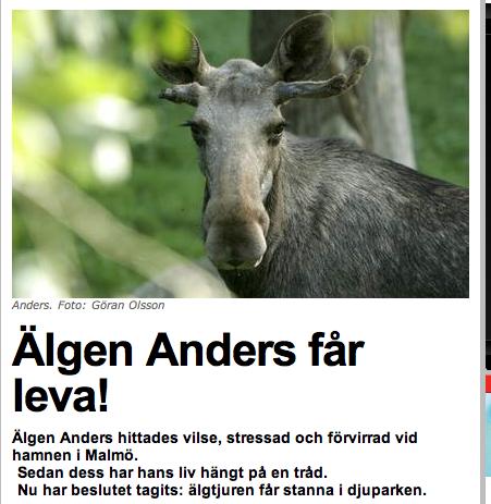 Naturvårdsverket tänkte skjuta Anders