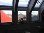 Stockholmstak ger Pariskänsla