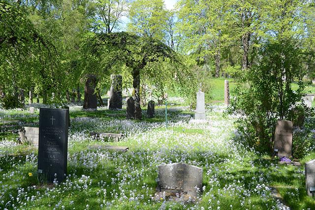 Nu blommar det på kyrkogården