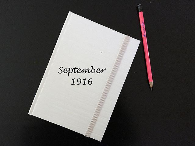Onsdag den 13 september 1916. Igår satte jag upp fågelbon i ett par träd.