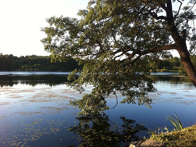 Råstasjön